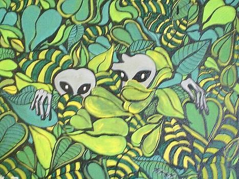 The  Peekers by Ann Teicher