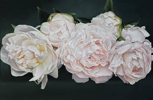 The Peonies 146 x 97 cm by Thomas Darnell