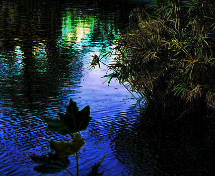 The pond at dusk by Jo Ann
