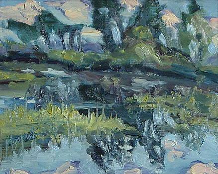 The Pond Steamboat Springs Colorado by Zanobia Shalks