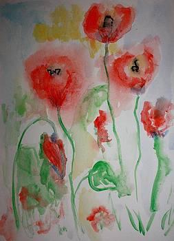 The Poppies by Kate Delancel Schultz