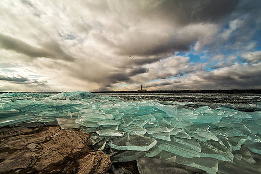 The Power of Nature by Matt Molloy