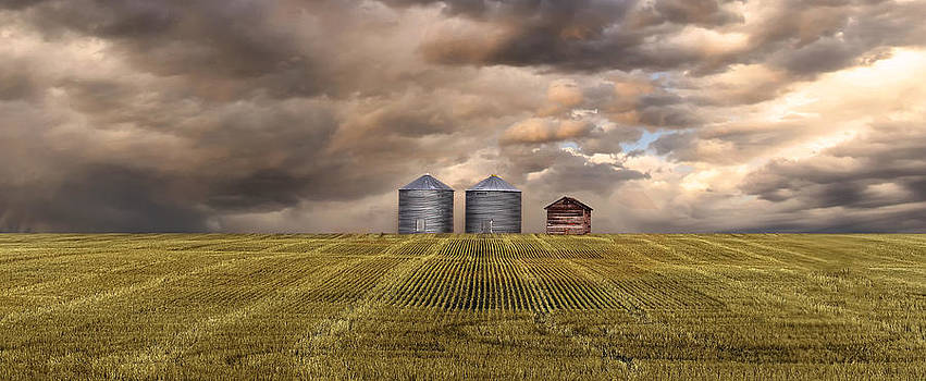 The Prairies by Mindy Mcgregor