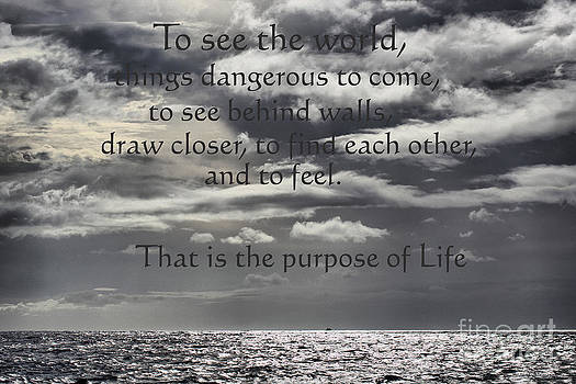 Cheryl Young - The Purpose of Life