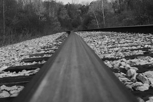 The Rail by Terry Hooper