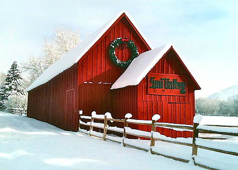 The Red Barn in Sun Valley by Amy G Taylor