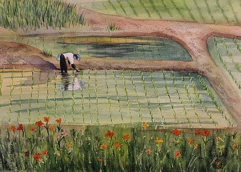 The Rice Planter by Kelly Miyuki Kimura