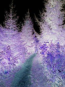 The right path by Jon Glynn