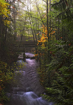 The River Flows by Ray Still