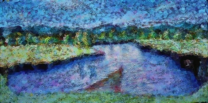Ion vincent DAnu - The River
