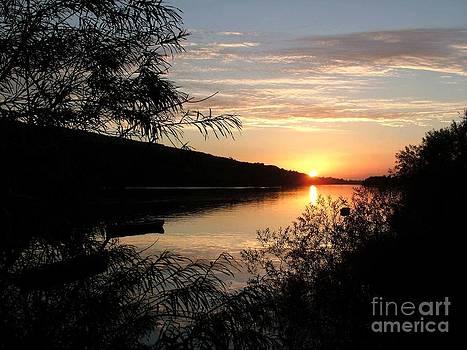 Joe Cashin - The river Suir at sunset