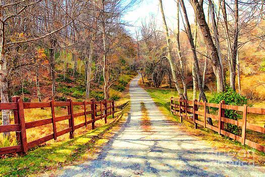 Dan Carmichael - The Road Home - North Carolina