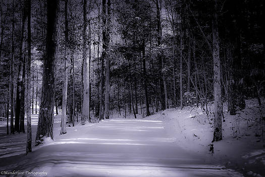 The Road Less Traveled by Paul Herrmann