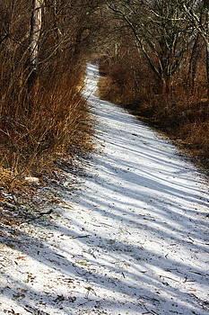 Anne Babineau - the road not taken