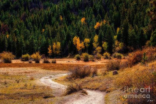 Jon Burch Photography - The Road To Fall