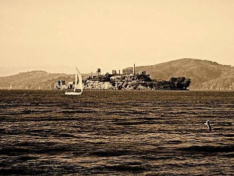 The Rock Prison Island by Bill Lighterness