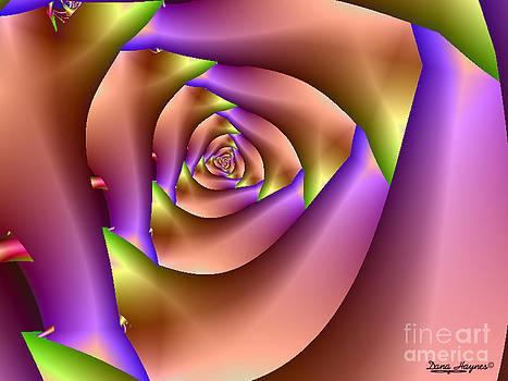 Dana Haynes - The Rose