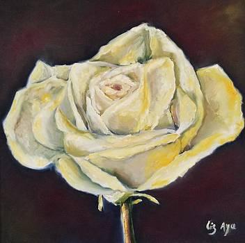 The Rose by Liz Aya