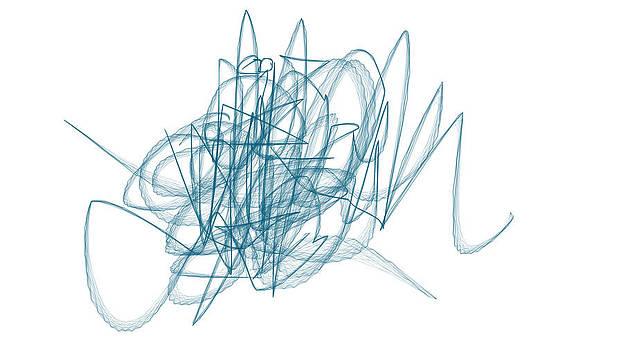 The scribble by Fabian Cardon