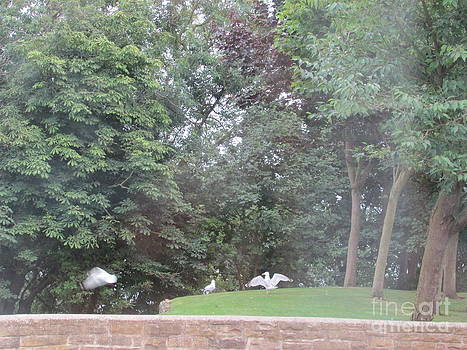 The seagulls in the green by Sylvia Howarth