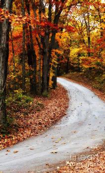 The Season of Fall by Tabatha Knox