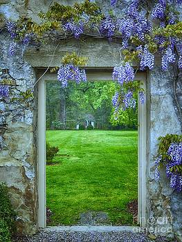 The Secret Garden by Nicola Fiscarelli