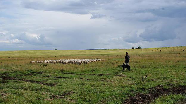 The shepherdess by Amelie Vandenberghe
