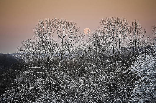 The Snow and The Moon by Shirley Tinkham