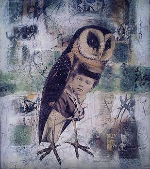 The Soul of an Owl  by Susan McCarrell