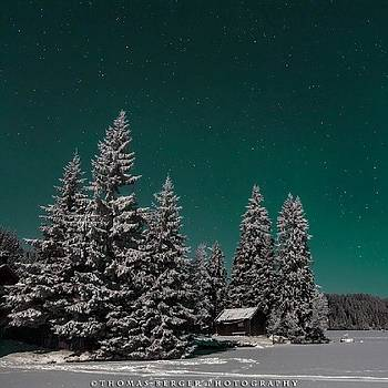 The Stary by Thomas Berger