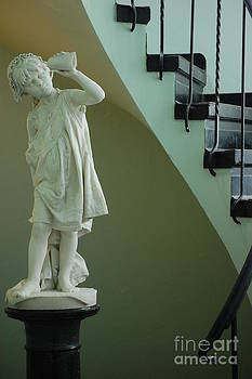 The Statue in the Stairway by Robert Meanor