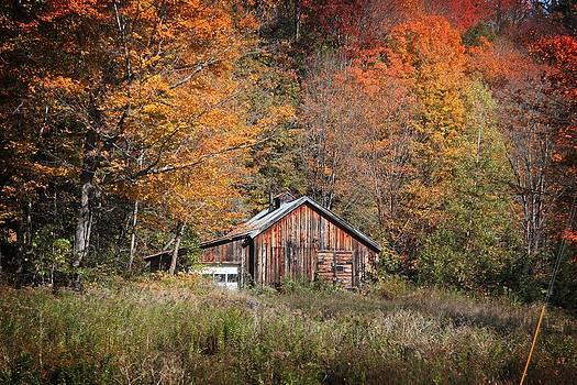 The Sugar House by Patricia Davis