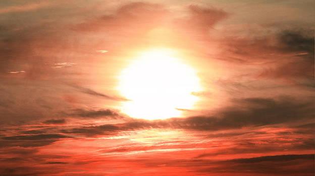 The Sun by Joseph Desmond