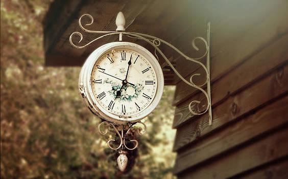 The time is precious by Victoria  Kostova
