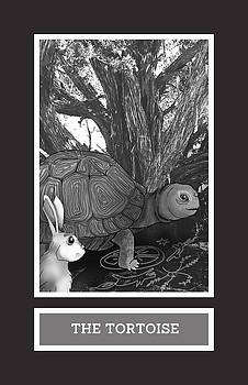 The Tortoise by Brenda Erickson