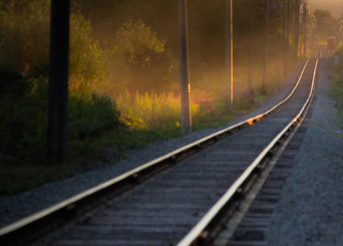 The Tracks by Melodie Douglas