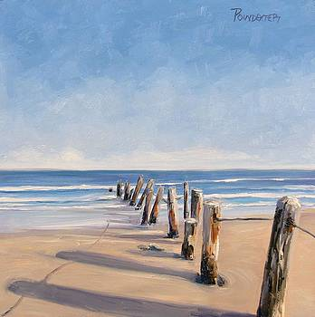 The Trail of Leaning Posts by Dianna Poindexter