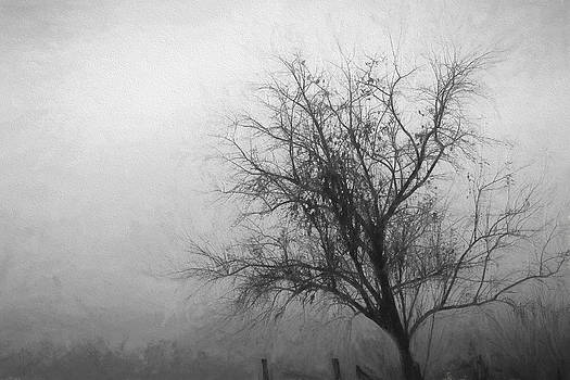 The Tree by Beckie Fitgerald