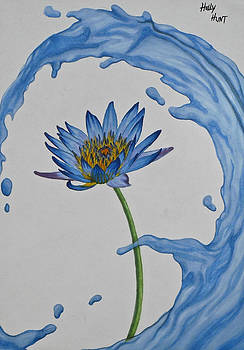 The Water Lily by Holly Hunt