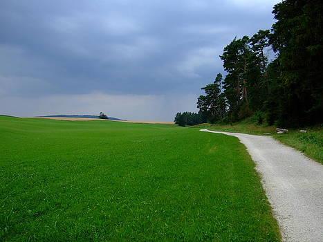 The Way Ahead by Matthias L