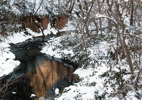 Tam Ryan - The West Fork Creek