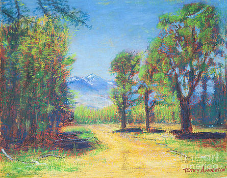 The Winding Road by Terry Anderson
