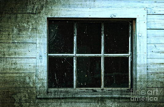 The Window by Marjorie Imbeau