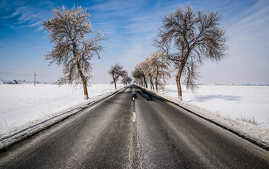 The Winter Road by Vlad Costras
