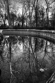 The wood mirror by Jose Luis Cezon Garcia