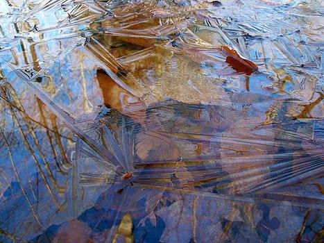 Thin Ice by David Pickett