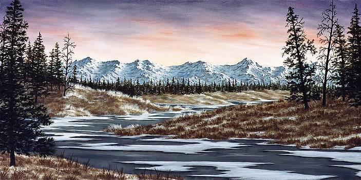 Thin Ice by Rick Bainbridge