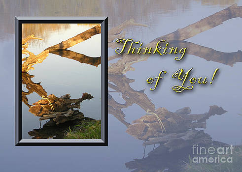 Jeanette K - Thinking of You Fish