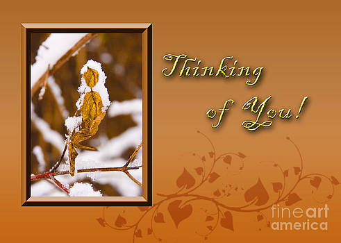 Jeanette K - Thinking of You Leaf