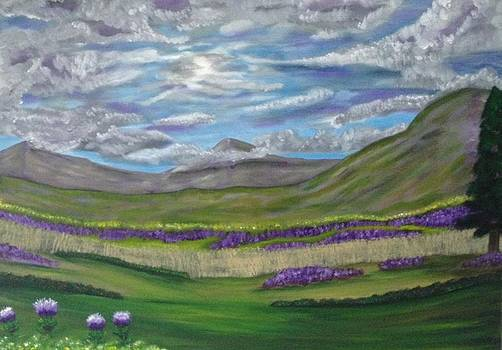 Thistles and fields by Scott Wilmot